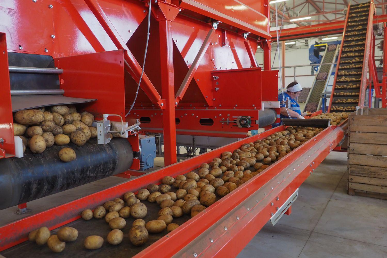 НаСтаврополье запустят овощехранилище мощностью шесть тыс. тонн