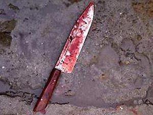 Двое учащихся гимназии признаны виновными в убийстве