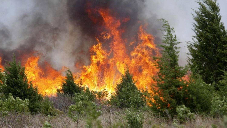 В некоторых районах Ставрополья 13-15 сентября сохранится высокая пожароопасность