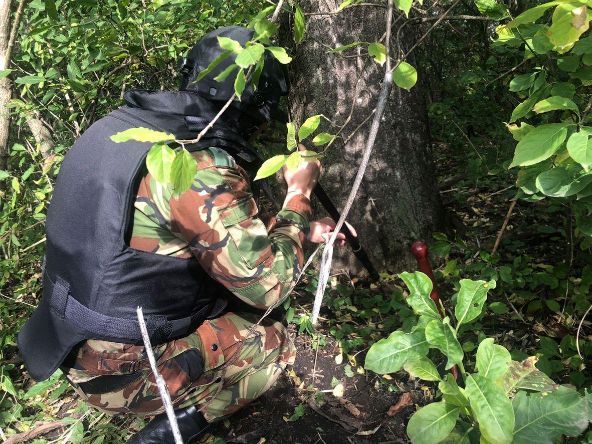 На Ставрополье нашли гранату времён ВОВ