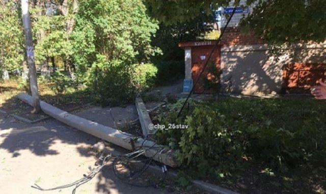 В Ставрополе упавшее дерево повредило припаркованные рядом автомобили