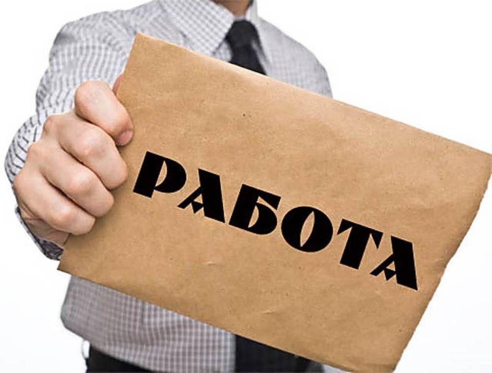 В Ставрополе рассказали о ситуации на рынке труда