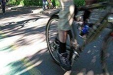 В парке Победы появятся велосипедные дорожки