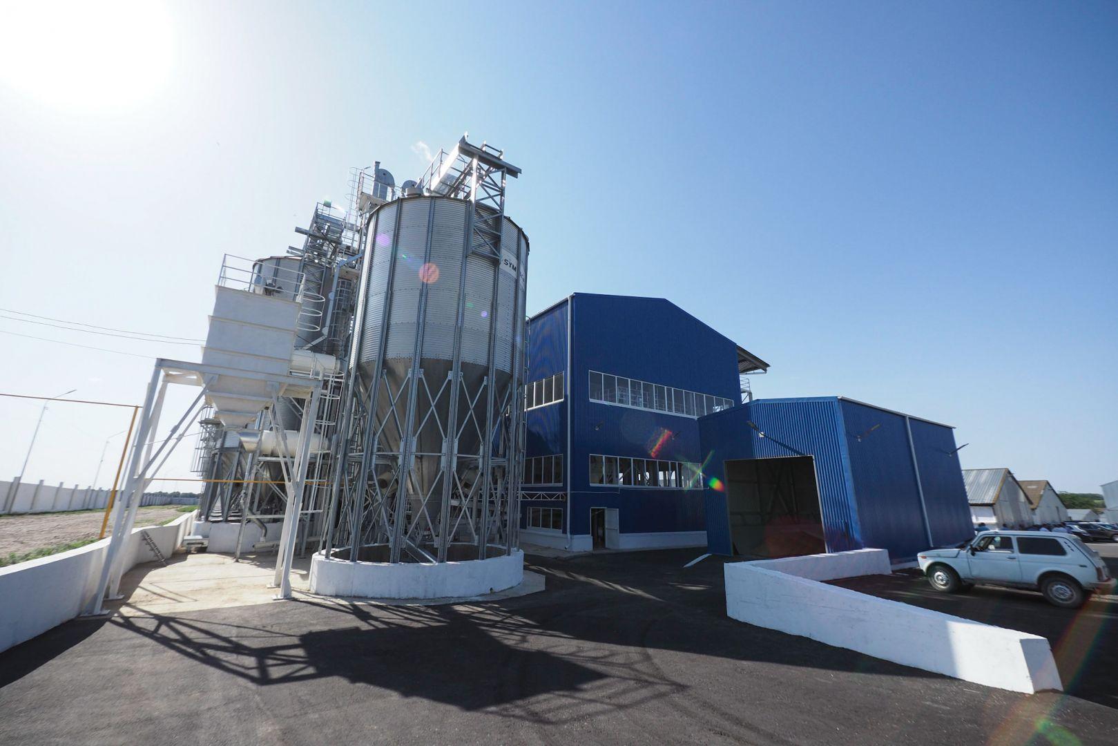 В Ставропольском крае запущен первый универсальный завод по подготовке семян