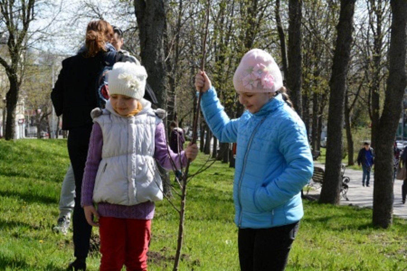 В Ставрополе в рамках субботника высадили четыре тысячи берёз, лип, рябин и акаций