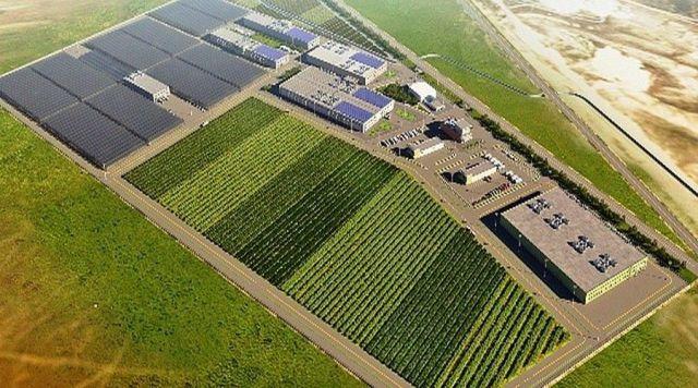 Крупный агропарк создадут в Ипатовском городском округе