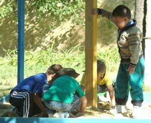 Двухлетний малыш отравился ядом в детском саду