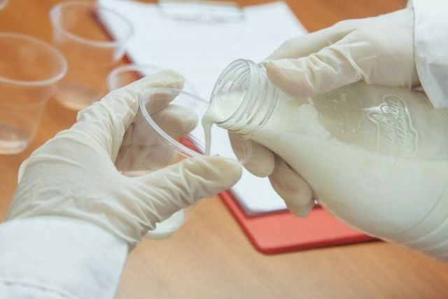 В кефире «МКС» и «Будённовскмолпродукта» нашли кишечную палочку