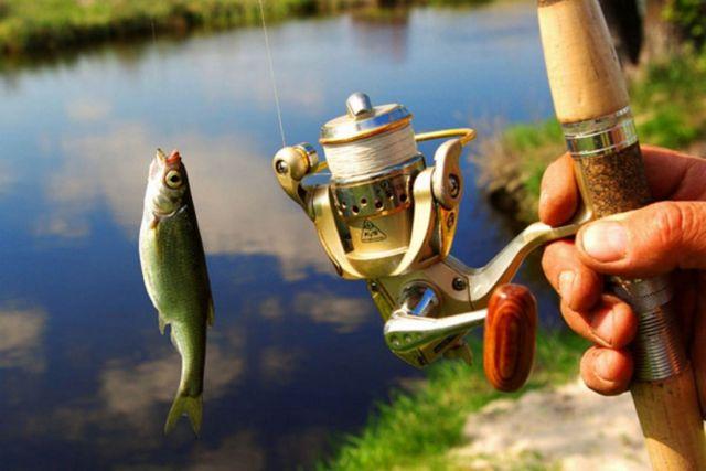 Сильнейшие рыбаки-любители устроили состязание на ессентукском озере