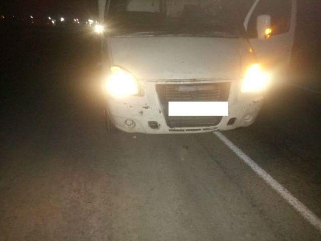 В Ставропольском крае под колёсами грузовой «Газели» погиб пешеход