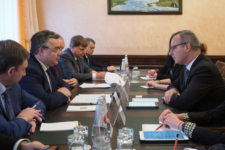 Владимир Владимиров провёл встречу с представителями компании «Энел Россия»