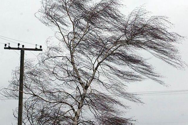 Сильный ветер на Ставрополье сохранится в понедельник