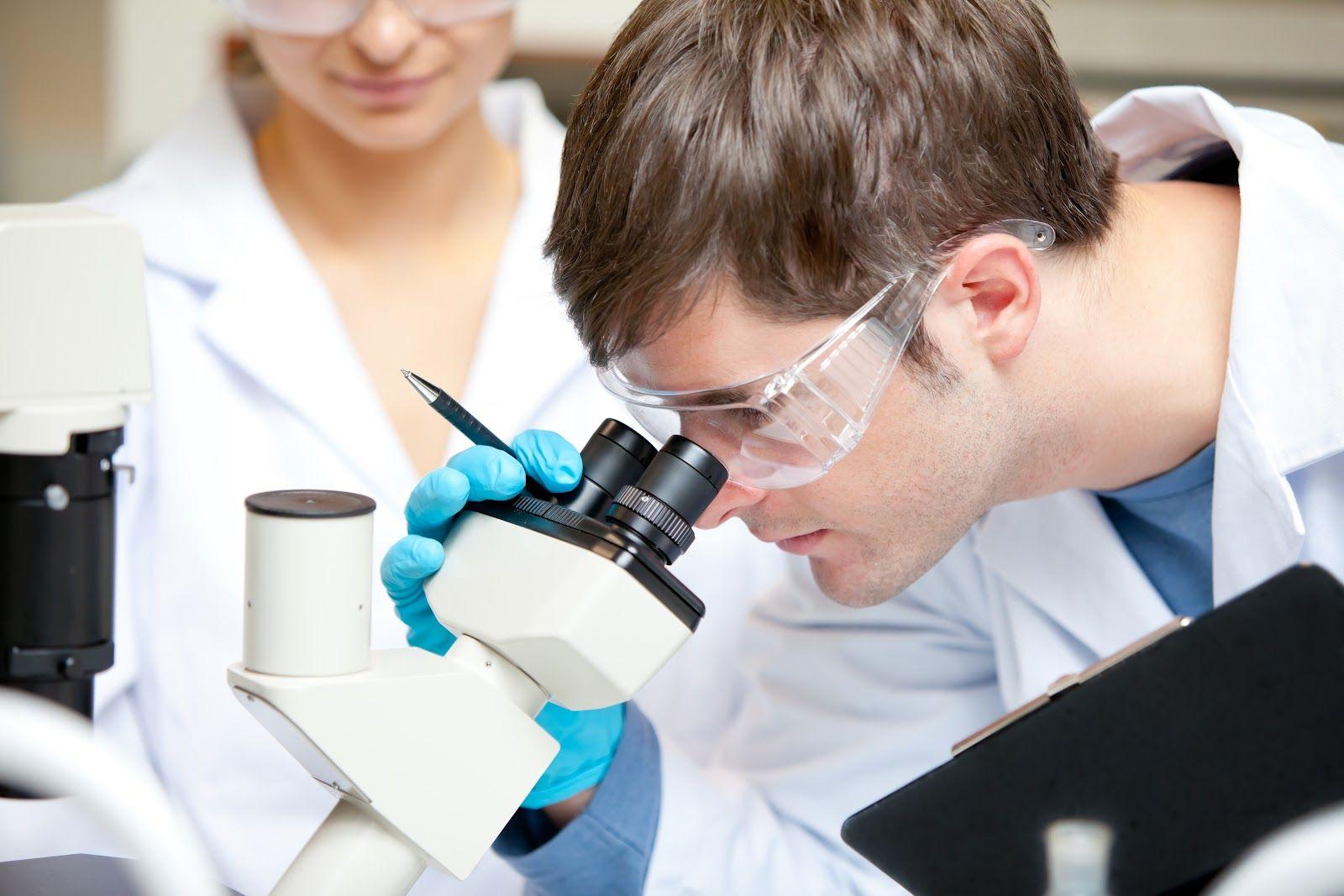 В Ставропольском крае определили имена лучших молодых учёных региона