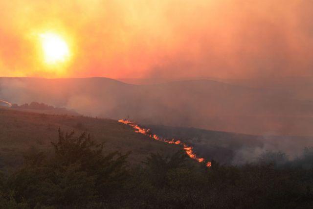 Пожарные сбивают пламя на горе Джуца Ставрополья