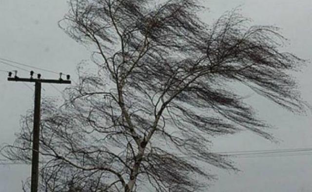 На Ставрополье 10 декабря прогнозируются порывы северо-западного ветра до 30 м/с