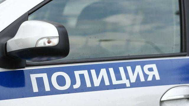 На Ставрополье проводится проверка по факту жестокого обращения с животными