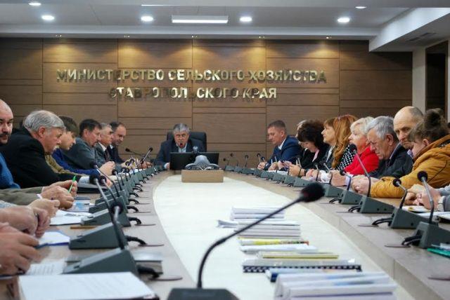 Ситников: «Стодеревская - пример успешного тандема бизнеса и власти»