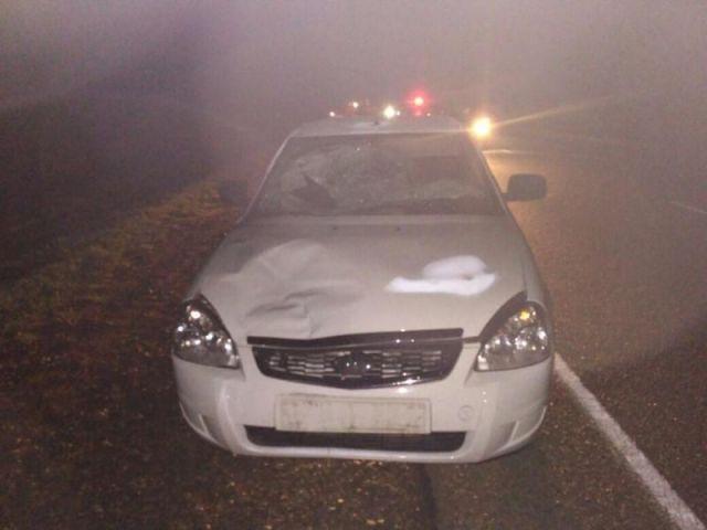 На Ставрополье пьяная женщина погибла под колёсами автомобиля
