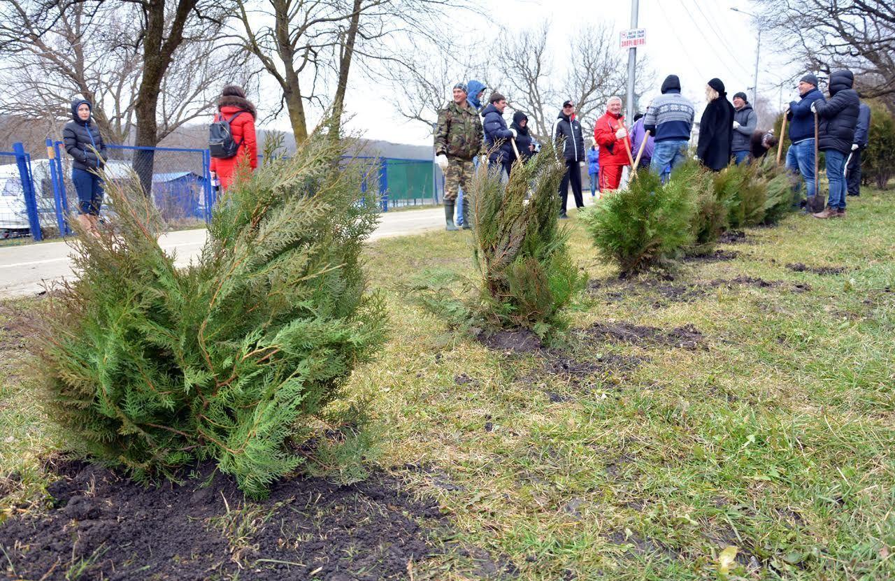 Насубботнике вСтаврополе высадили 1700 новых деревьев