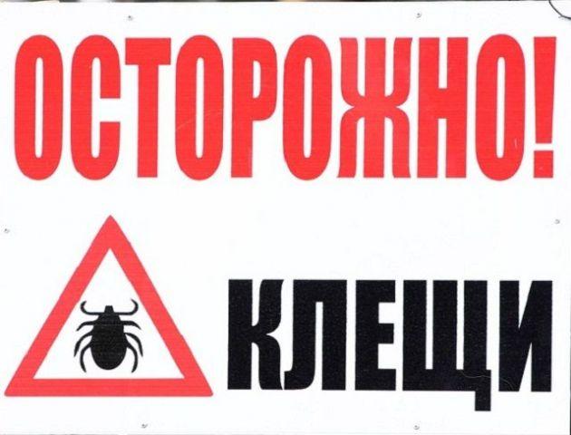 Ставропольские эпидемиологи советуют жителям края защитить себя от клещей