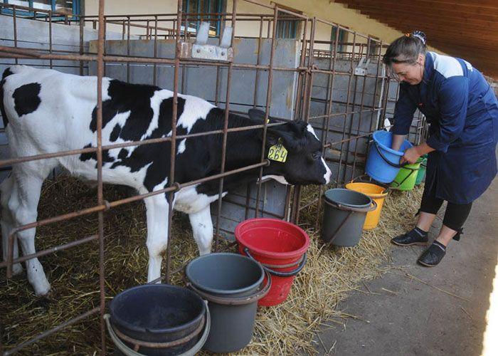 НаОрловщине афишировали  данные сельскохозяйственной переписи