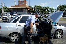 Полиция края переведена на усиленный вариант несения службы