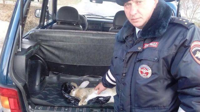 НаСтаврополье продолжается операция«Охота»