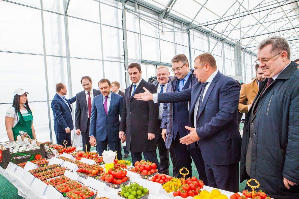 Результаты текущего года впромышленном комплексе Ставрополья радуют профессионалов