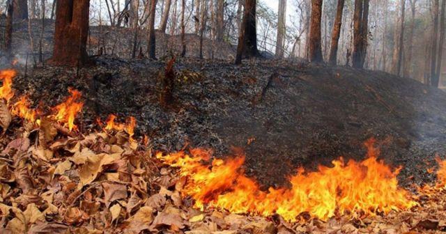На Ставрополье 23-25 сентября ожидается чрезвычайная пожароопасность