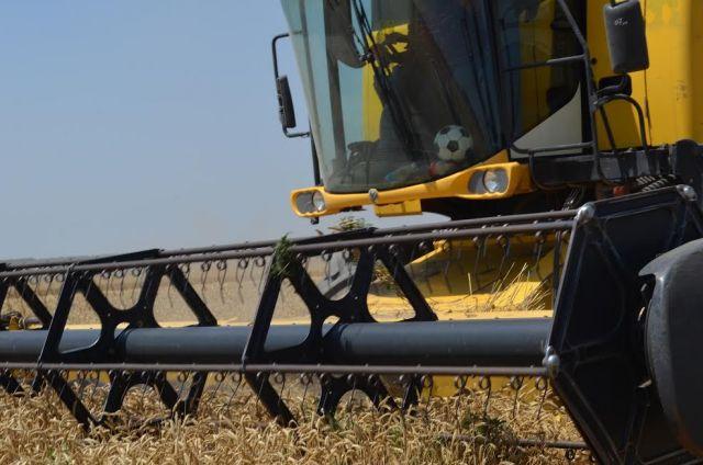 Министр сельского хозяйства Ставропольского края проинспектировал ход уборки зерна в Курском районе