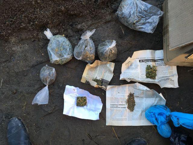 Житель Ставрополья хранил дома более 6 килограммов конопли
