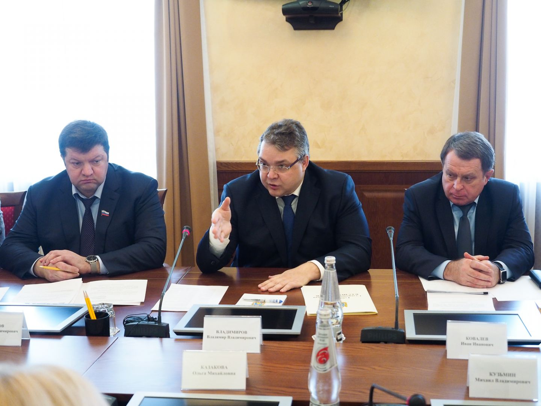 Губернатор Владимиров встретился спредставителями Ставрополья в государственной думе иСовфеде