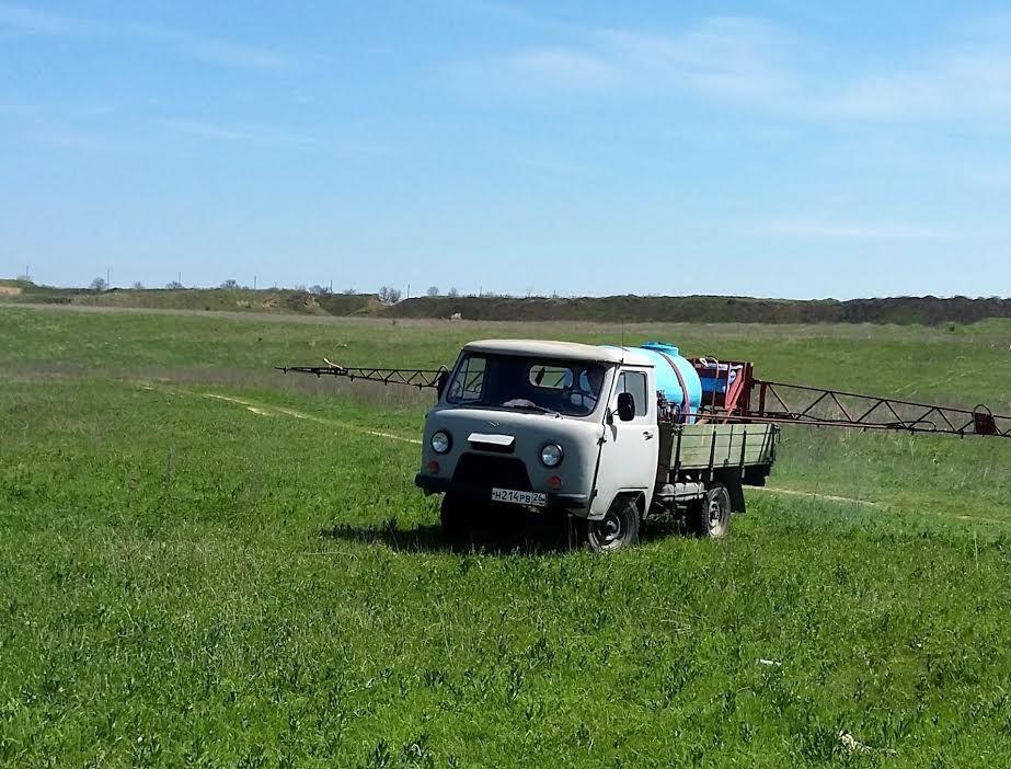 В Георгиевском районе 539 гектаров пастбищ обработают против клещей