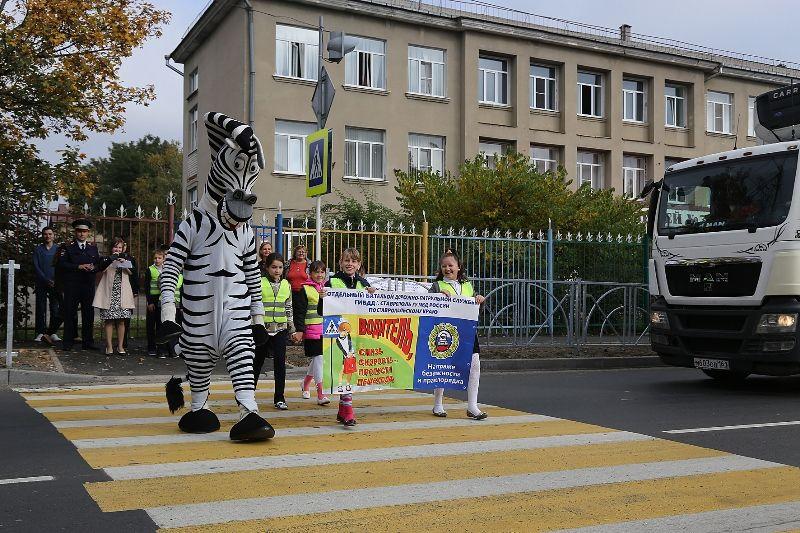 В Ставрополе зебры раздавали пешеходам световозвращатели