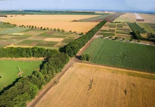 Минимущества: Ставропольские земли демонстрируют устойчивый спрос