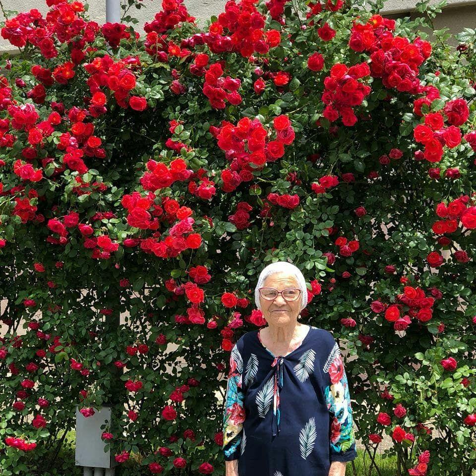 В Ставропольский край приехала 91-летняя трэвел-блогер из Сибири