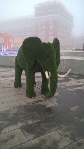 Центр Ставрополя украсили новыми арт-объектами