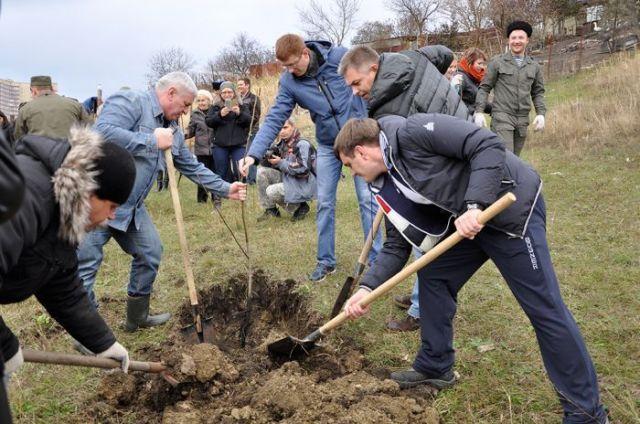 Шесть тысяч деревьев пополнили зеленый фонд Ставрополя