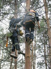Ставропольские спасатели МЧС снова первые