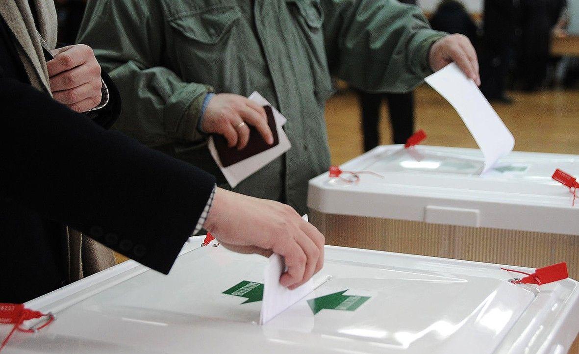 Избирком Ставропольского края ожидает трёх тысяч общественных наблюдателей на участках в день выборов