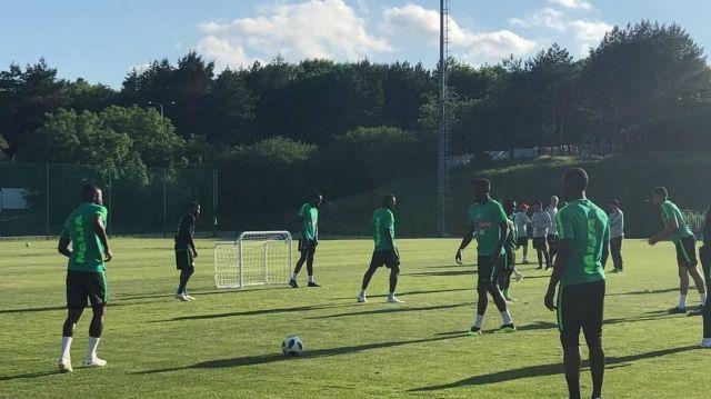 Нигерийские футболисты покидают чемпионат мира и Ставропольский край