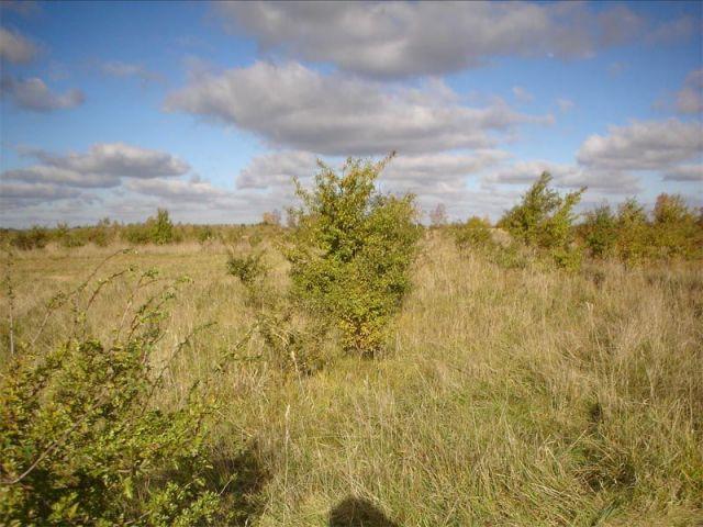 На Ставрополье агрофирма оштрафована за неиспользование земель на 200 тысяч рублей