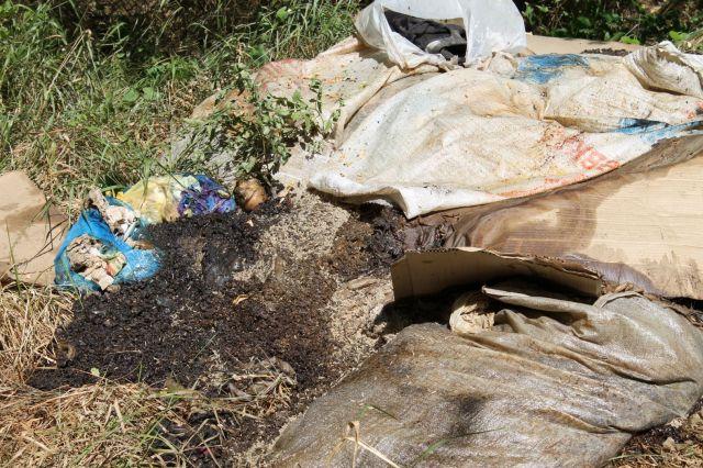 Народный фронт: Село Донское грозит получить неофициальный статус «мусорной столицы» региона