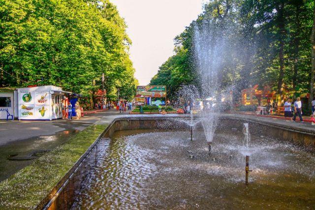 Ставрополь и Пятигорск вошли в топ-10 городов России с лучшей экологической обстановкой