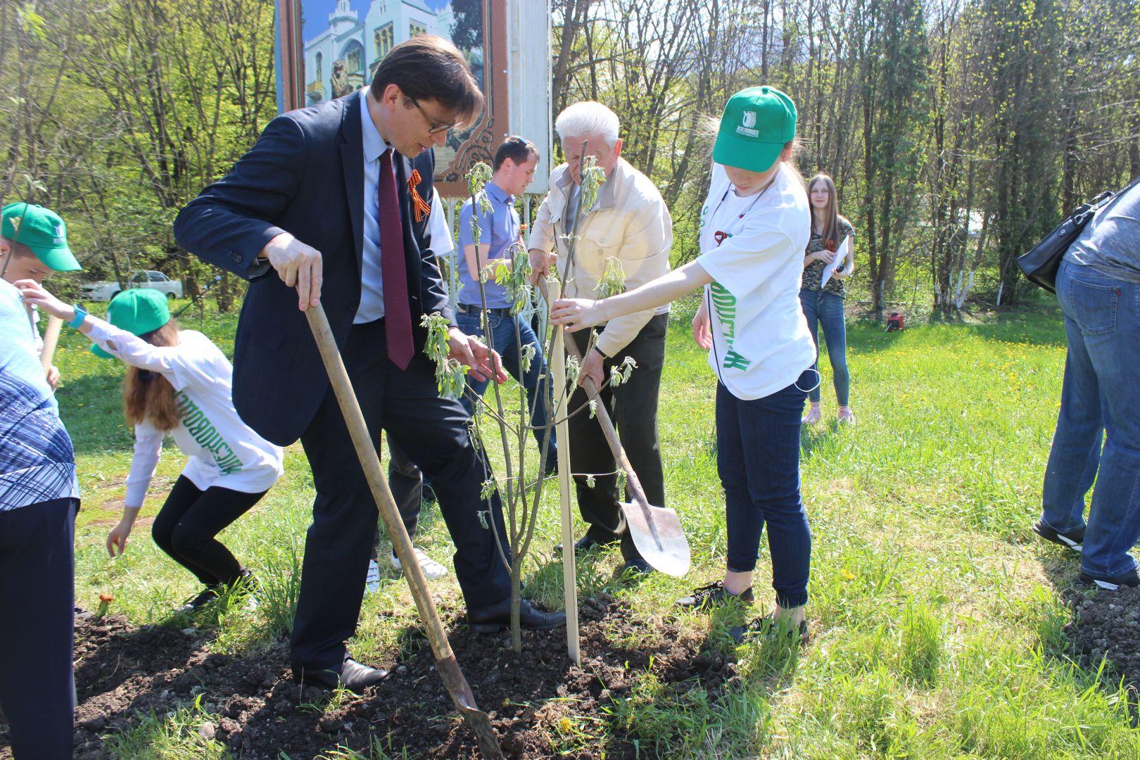 «Рябиновый календарь Победы» Железноводска пополнился новыми деревцами