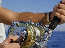 В Александровском районе прошли соревнования по спортивному лову рыбы