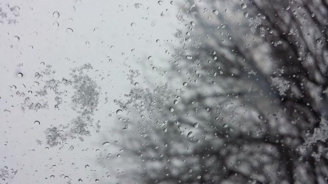 На Ставрополье 31 декабря ожидается дождь