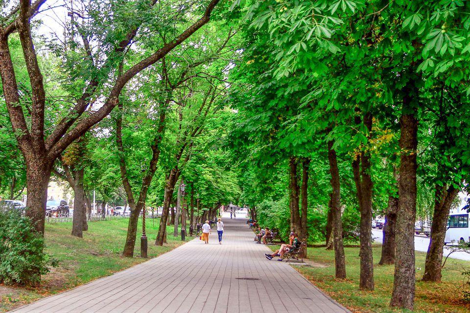 Жителям Ставрополя предлагают поучаствовать в отборе проектов развития территорий