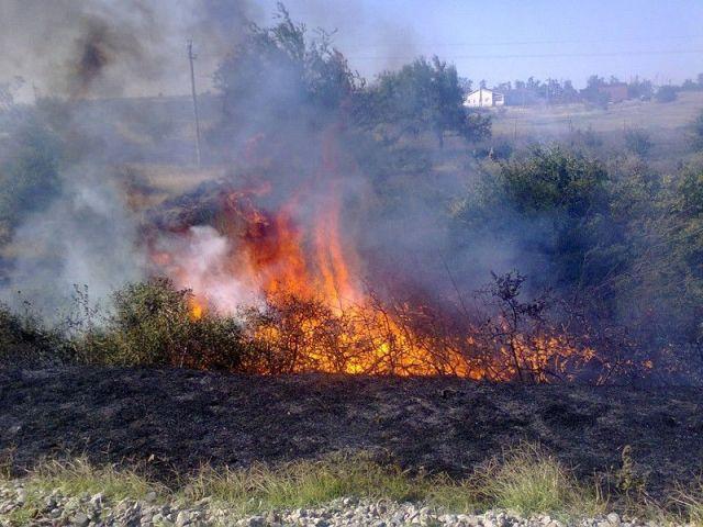 10-11 августа в Ставропольском крае сохранится высокая пожароопасность