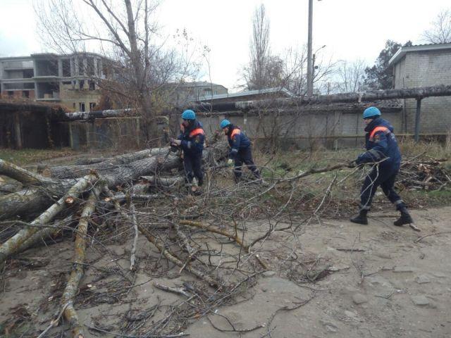 В Железноводске сильный ветер повредил крышу спортзала и повалил на машины дерево